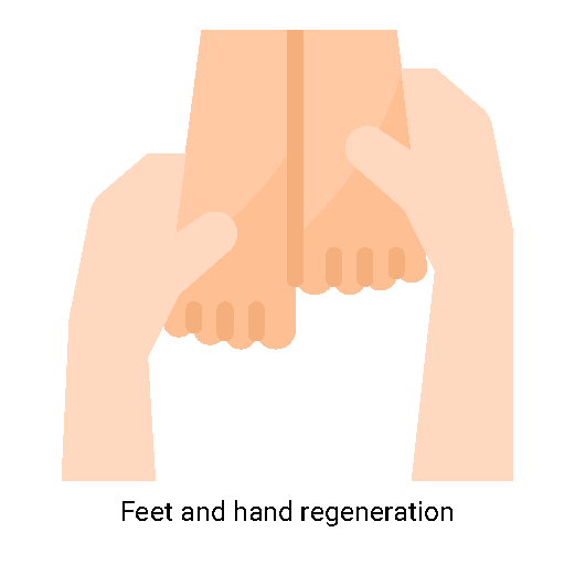 Feet and hand regeneration-01